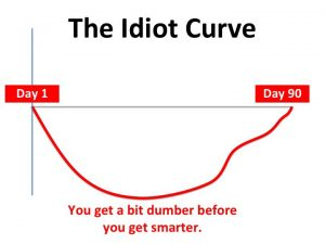 Nevergrey blog - The Idiot Curve
